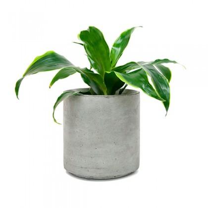 Кашпо Cylinder 155 Flower pots