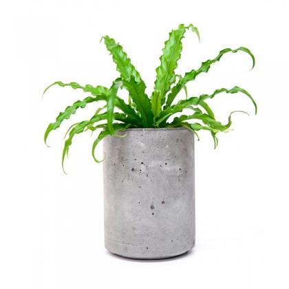 Кашпо для цветов Cylinder 205 Flower pots