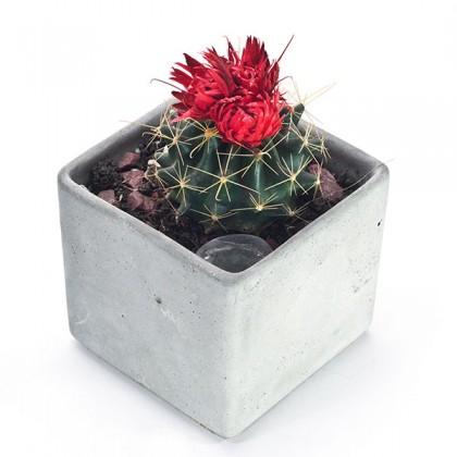 Кашпо для цветов из бетона Block